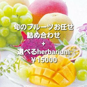 果物 プレゼント お供え 果物フルーツセット 水菓子 fruits kudamonoプレゼントお供え お見舞い 果物 くだもの 水果 fruit ハーバリウム