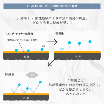 TheBAR【ミニサイズです】トライアルセットお試し国産日本製固形シャンプー固形コンディショナーエシカルサスティナブルトラベルセットサバーサ・バーやさしい脱プラ