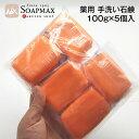 薬用石鹸【臨時発売】日本製 薬用 手洗い 石鹸 100g×5個入[メール便でお届け]|感染予防は手洗い ハンドソープ の代わりに 薬用石鹸 …