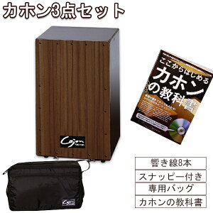 友澤カホン Tomozawa 日本製カホン (響線8本 スナッピー付) ケース付 国産カホンでこの価格! TCA-3 cajon-set 教則本もセット カホンセット 初心者用 にもおすすめ