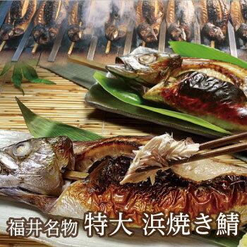 鯖を豪快に串にさし丸焼きに・・!福井名物「浜焼き鯖」