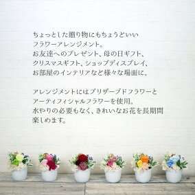 【ランキング1位獲得】【町早割り特典】母の日プリザーブドフラワーアレンジ花プレゼントギフト贈り物かわいい小さいお母さん