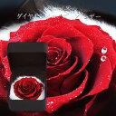 【スワロフスキー付き】 プロポ—ズ プレゼント クリスマス 大輪のダイヤモンドローズ 合皮レザーボックス プリザーブ…