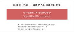 北海道・沖縄・一部離島は別途送料540円かかります