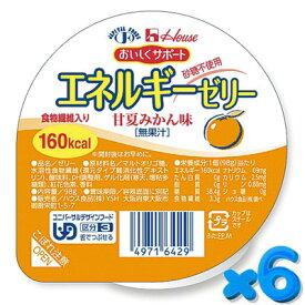 おいしくサポート エネルギーゼリー 甘夏みかん 98g【6個セット】 ハウス食品【YS】