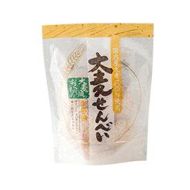 訳あり 賞味期限 2019/8/11 麦のいしばし 大麦せんべい 生姜味 25g 石橋工業