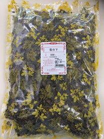 【ユキノシタ/虎耳草/生/500g】雪の下/ゆきのした/漢方茶/薬膳茶/健康茶