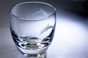 スリードルフィンズ冷酒杯