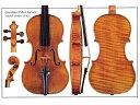 Alard' Guarneri 'del Gesu violin 1742 (バイオリン ポスター)