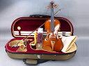 Advanced Viola Set15.5 インチ #08