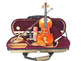 クラフトバイオリンセット 1/2ボックスウッド ドレスデン