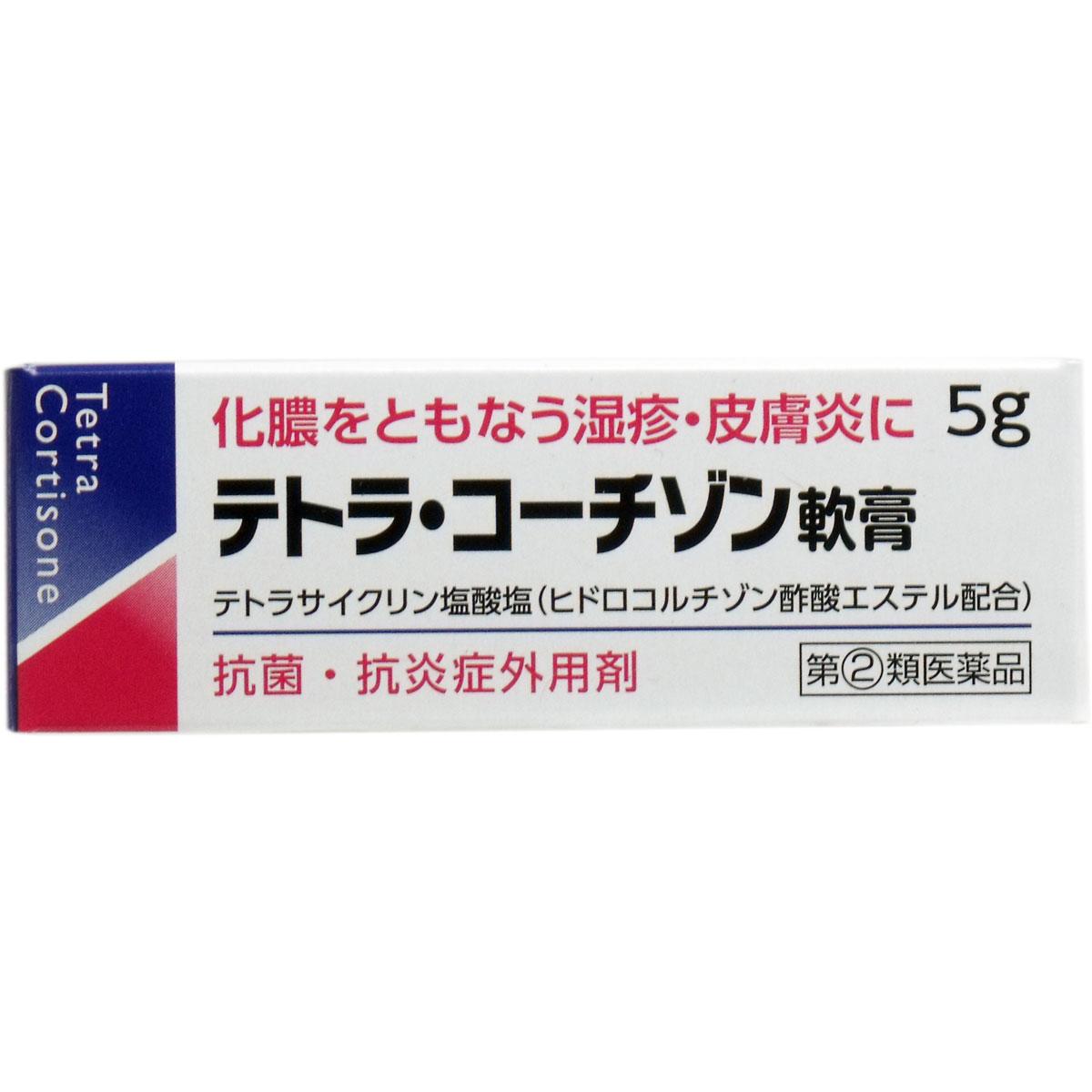 【第(2)類医薬品】 テトラコーチゾン軟膏 5g