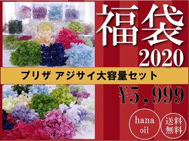 【即納】お得 プリザーブドフラワー 花材 アジサイ 詰め合わせ 10個 ハーバリウム