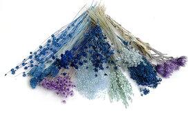【即納】プリザーブドフラワー ドライフラワー そらーるオリジナル花材入り 小分け 10個 ブルー系アソート 福袋 送料無料