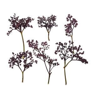 【即納】 固まるハーバリウム クリアリウム ニワトコ ヴァイオレット 12枚 押し花 花
