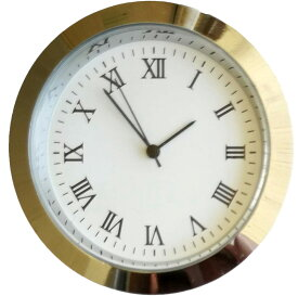【即納】 クリアリウム ウォッチC 大 1個 ローマ数字 シルバー 固まる ハーバリウム インテリア 置物 オリジナル 時計 ハンドメイド オリジナル おうち時間