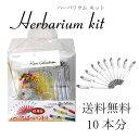 【即納】ハーバリウム ボールペン 10本分 キット 花材セット