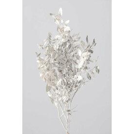 【即納】 ピスタチアリーフ プラチナ プリザーブドフラワー 花材 大地農園 白 銀 花材 プリザ ギフト お祝い インテリア 玄関 リビングルーム プレゼント 贈り物 結婚祝い 誕生日プレゼント 敬老の日