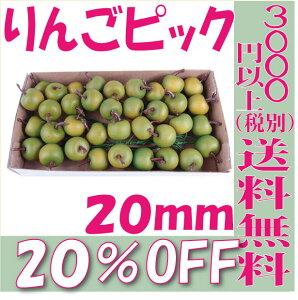 【即納】 りんごピック 20mm【グリーン 箱 36本入】 松村工芸