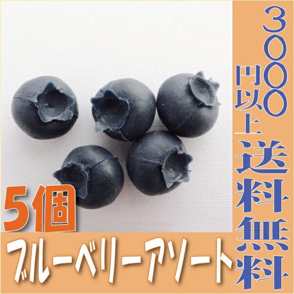 【即納】 ブルーベリーアソート【小分け 5個入】 アーティシャル 東京堂