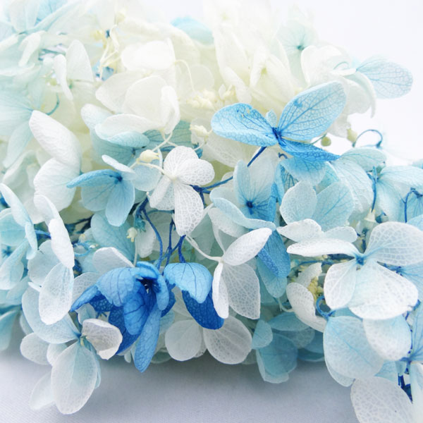 【即納】 プリザーブドフラワー 花材 ソフトピラミッドアジサイ スフレ【ブルーホワイト 小分け】大地農園