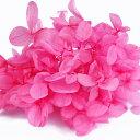 【即納】プリザ ケース花材 Nアジサイ 【フラミンゴ 小分け 約4g入】そらプリ