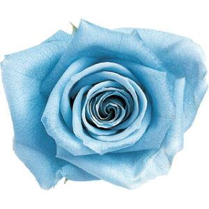 【即納】 ブリザードフラワー 花材 ピッコラブロッサム【パウダーブルー】1輪 フロールエバー