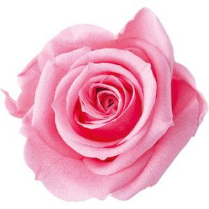 【即納】 ブリザードフラワー 花材 ピッコラブロッサム【シュガーピンク】1輪 フロールエバー