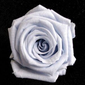【即納】 ブリザードフラワー 花材 ベイビー ローズ【コットンブルー 小分け 1輪入】 フロールエバー