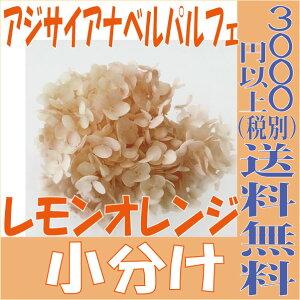 【即納】 プリザーブドフラワー 花材 あじさいアナベル パルフェ【レモンオレンジ 小分け】東北花材