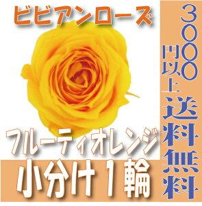 【即納】 プリザーブドフラワー 花材 ビビアン ローズ【フルーティオレンジ 小分け 1輪入】大地農園