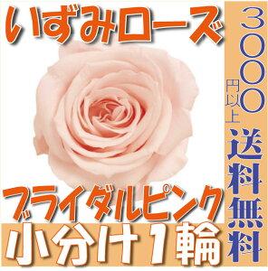 【即納】 プリザーブドフラワー 花材 いずみ ローズ 【ブライダルピンク】 1輪 大地農園