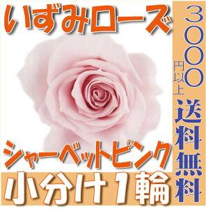 【即納】 プリザーブドフラワー 花材 いずみ ローズ 【シャーベットピンク】 1輪 大地農園