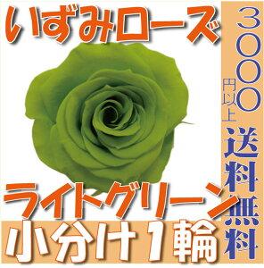 【即納】 プリザーブドフラワー 花材 いずみ ローズ 【ライトグリーン】 1輪 大地農園