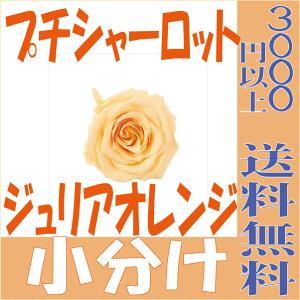 【即納】 プリザーブドフラワー 花材 プチシャーロット【ジュリアオレンジ 小分け 1輪入】大地農園