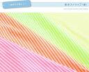 【カット50cm単位】蛍光ストライプ(細)【布・生地・ネオンカラー】