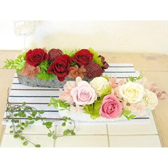 Karenai flower preserved flower arrangement Mandelbrot DAN-P062