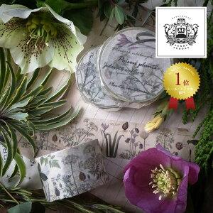 サニーサンデイ SUNNY SUNDAY オリジナルマスキングテープ Poison plants ポイズンプランツ 25mm 2.5cm幅 SSD-POISON-25 毒のある植物 サニーサンデー 手帳 スケジュール マステ