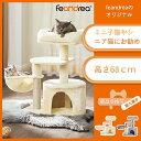 FEANDREA キャットタワー ミニ子猫やシニア猫にお勧め 猫タワー ねこタワー ネコタワー 低い 小型 ミニ コンパクト 省…