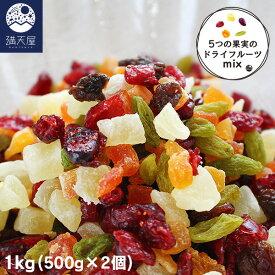 ドライフルーツミックス 1kg (500g×2個) 1袋あたり1,695円
