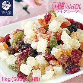 ドライフルーツミックス 1kg (500g×2個)
