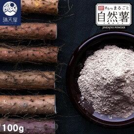 国産 自然薯パウダー 100g 〜 さらっとまるごと自然薯 (じねんじょ) 〜 (無添加 無着色 粉末 レジスタントスターチ)