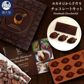 <手作りキット>カカオ豆から手作りチョコレートキット (ダリケー Dari K てづくりプレゼント 自由研究 お菓子作り)