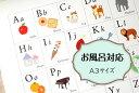 お風呂ポスター「アルファベット表」ABC表 A3 アルファベットチャート ポスター インテリア