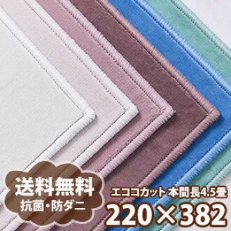 It is 10 times cube carpet cut pile Takeru Honma 4.5 tatami (approximately 220*382cm) order-colored size pop color, all 12 colors of bibit color flame-proof, tick Aswan living bedroom - 6 tatami-proof only in a smartphone entry