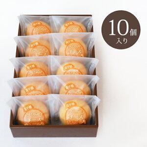 【送料無料】おひさまチーズまんじゅう10個入 宮崎銘菓 そらいろ 高千穂 お土産