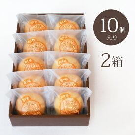 【送料無料】おひさまチーズまんじゅう10個入 2箱 宮崎銘菓 そらいろ 高千穂 お土産