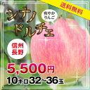 【送料無料】長野産 りんご シナノドルチェ 10kg プレゼントにも