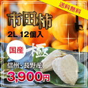 【送料無料・冷凍】お中元ギフト 市田柿 極 2L/12個入 干柿・干し柿
