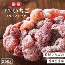 【送料無料 国産】ドライフルーツ いちご 250g | ドライいちご ドライイチゴ 苺 長野 信州 大容量 お徳用 お得用 ご自…